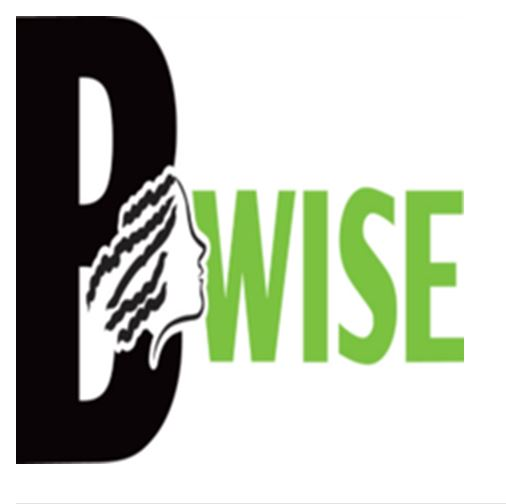 President & Founder | Black Women in Science & Engineering (BWISE)
