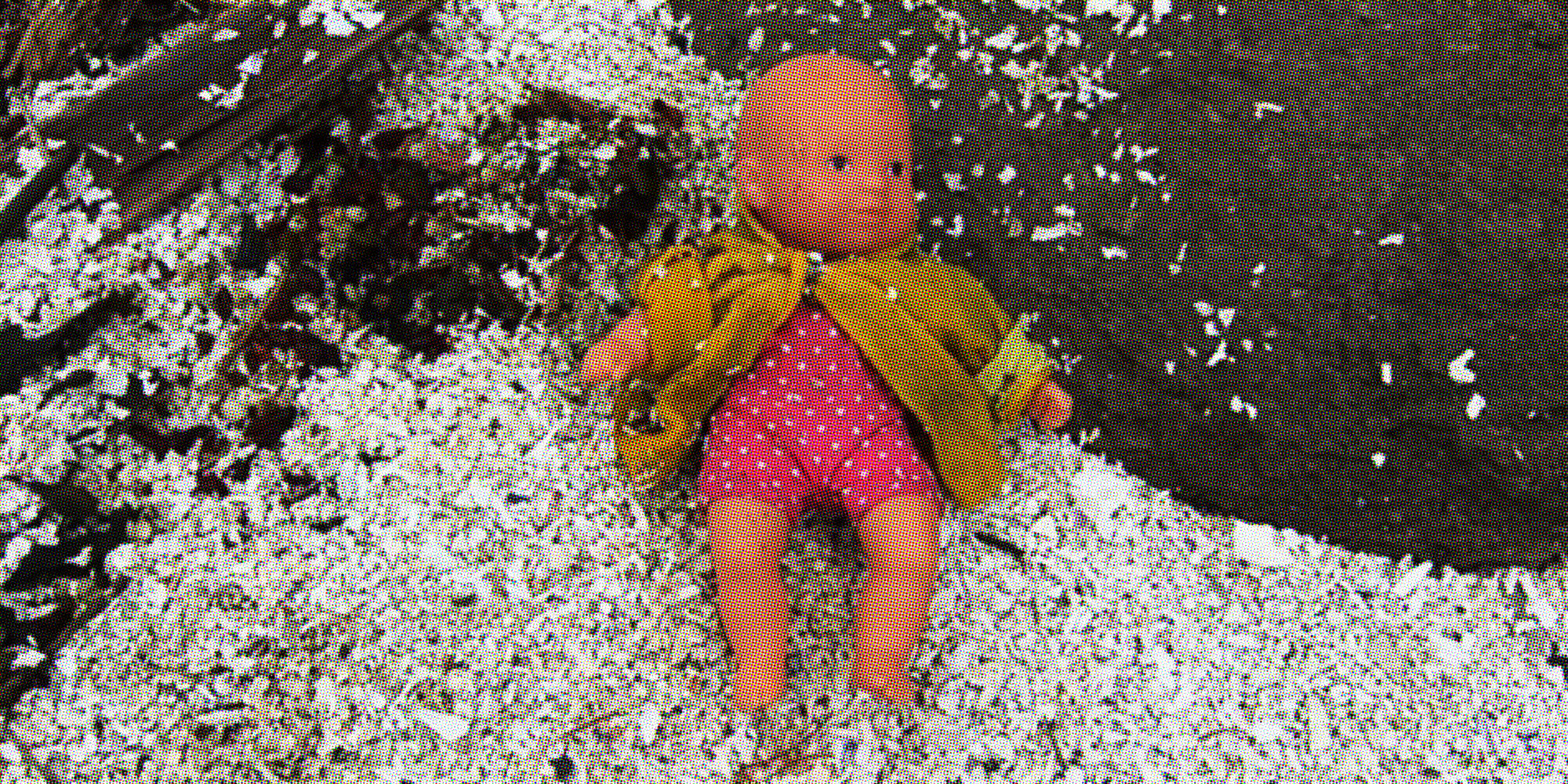 Real Life Toy Story: How a Lost BC Dolly Survived An Epic Ocean Odyssey to Return Home