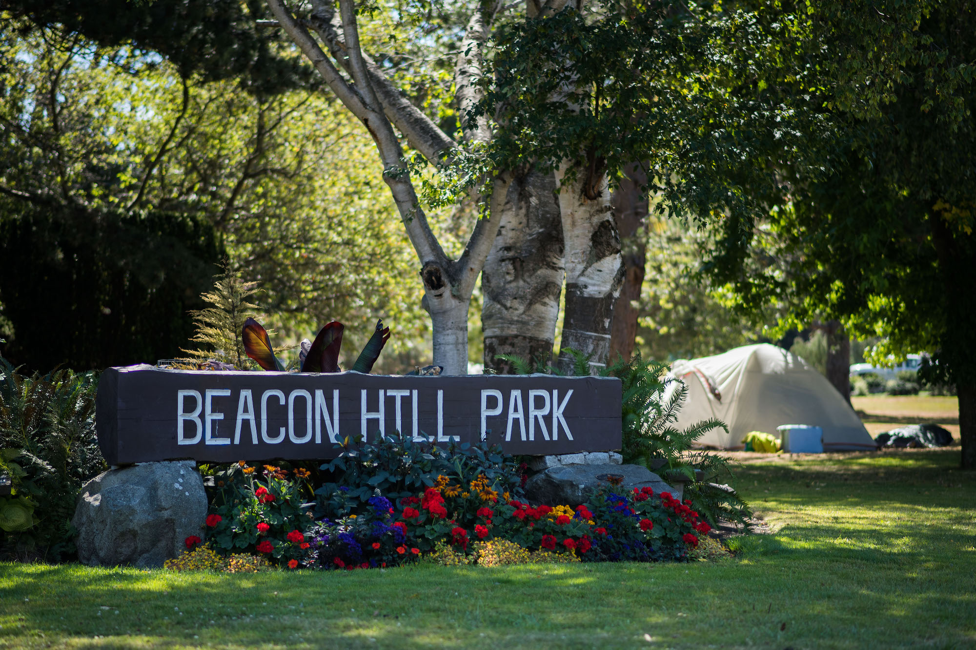 Once-progressive Friends of Beacon Hill Park used to fight for the marginalized. What happened?