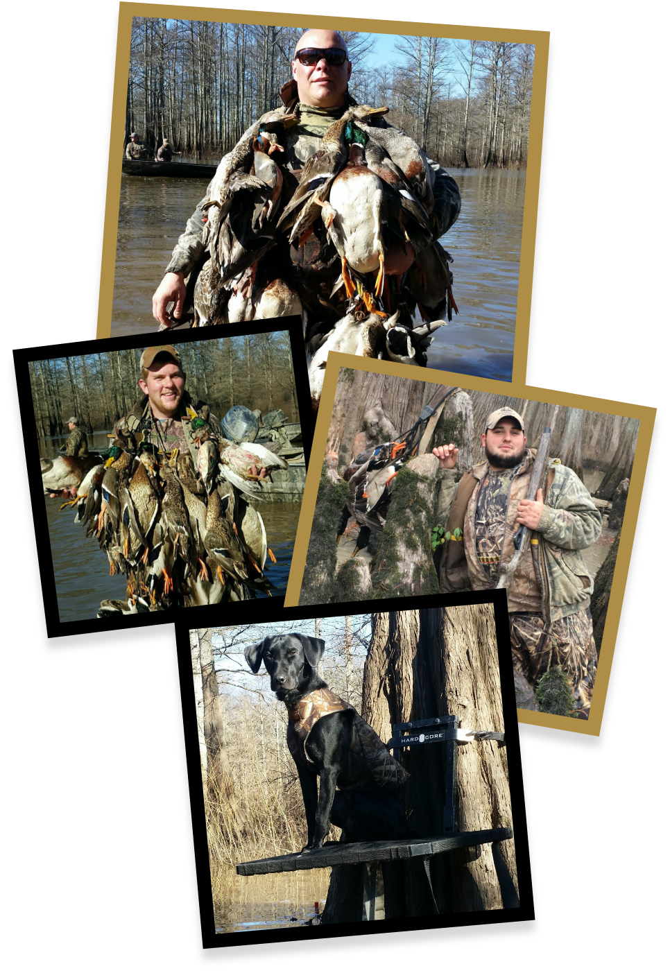 Arkansas Duck Hunting Guides Waterfowl Outfitters