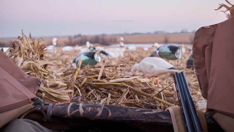how much cover does your duck blind need