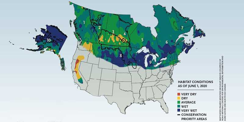 Spring 2020 Waterfowl Habitat Conditions Map
