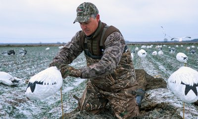Windsocks fill out the spreads of snow goose hunters to add motion and numbers.