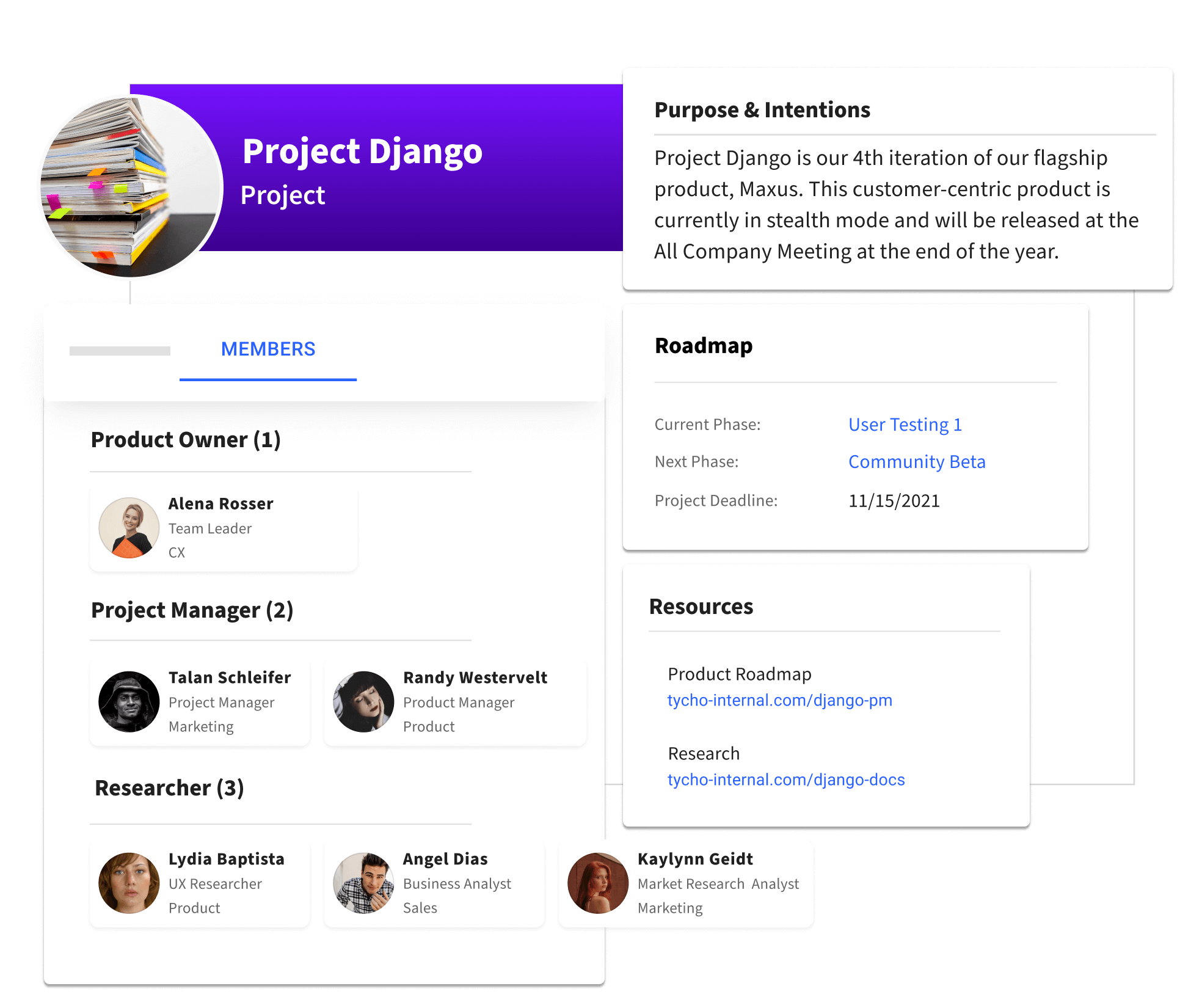 A profile for a cross-functional project