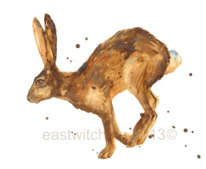 A recent hare commission in watercolour 11x14 inches