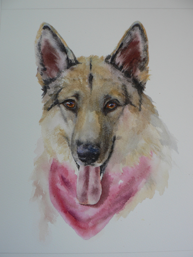 """Beauty"" - original watercolour dog portrait by Alison Fennell - 11x14 inches"