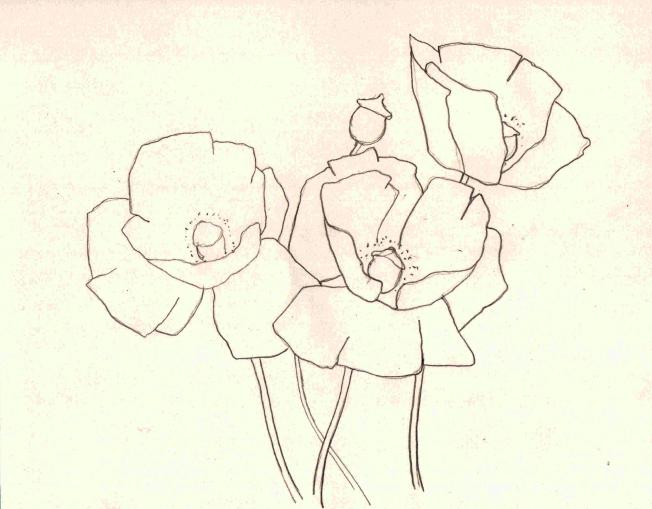 poppy cluster