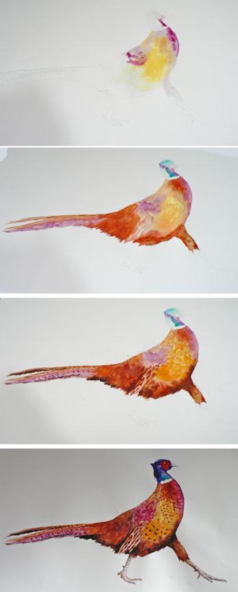 pheasant strip.jpg