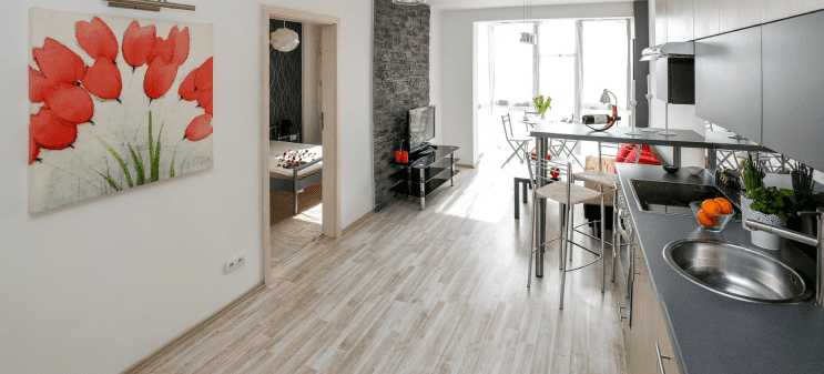 Apartment with the kitchen