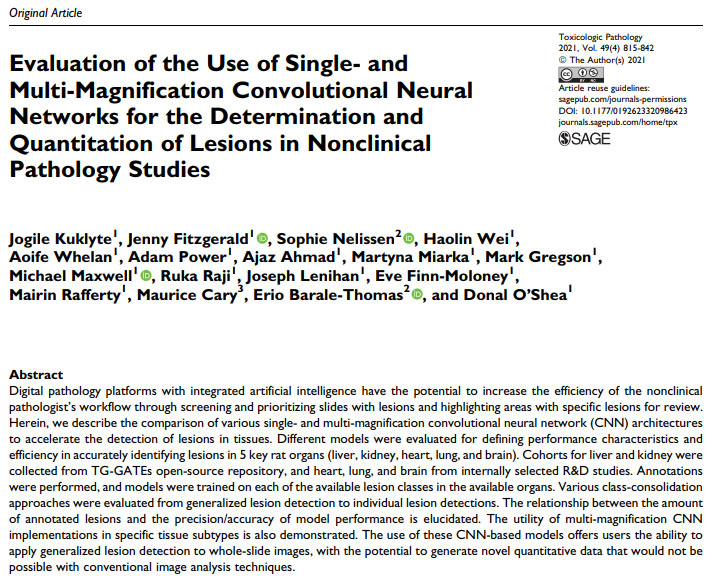 Evaluation of the Use of Single- and Multi-Magnification Convolutional Neural Networks for the Determination and Quantitation of Lesions in Nonclinical Pathology Studies