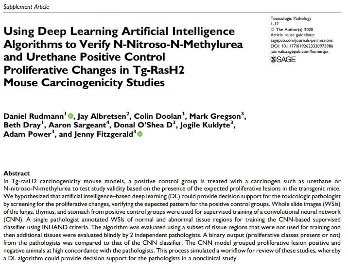 Using Deep Learning Artificial Intelligence Algorithms to Verify N-Nitroso-N-Methylurea and Urethane Positive Control Proliferative Changes in Tg-RasH2 Mouse Carcinogenicity Studies