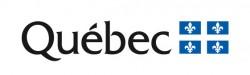 Logo MESI