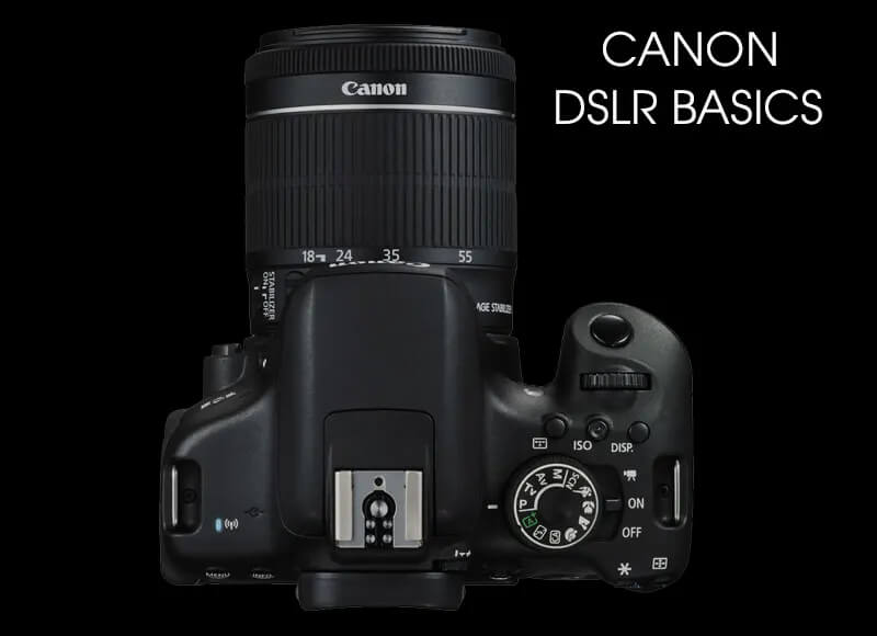 Canon Camera Basics - online session