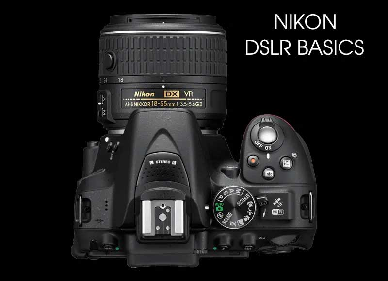 Nikon Camera Basics - online session