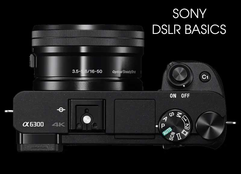 Sony Camera Basics - online session