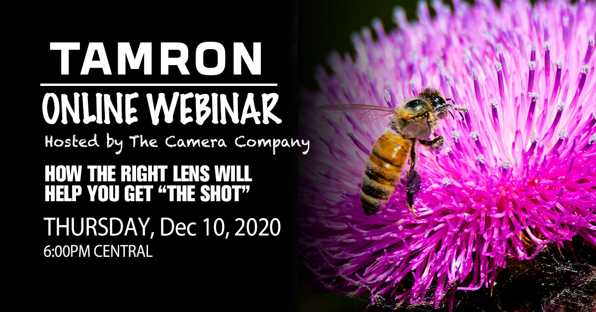 """How the Right Lens will help you get """"The Shot"""""""