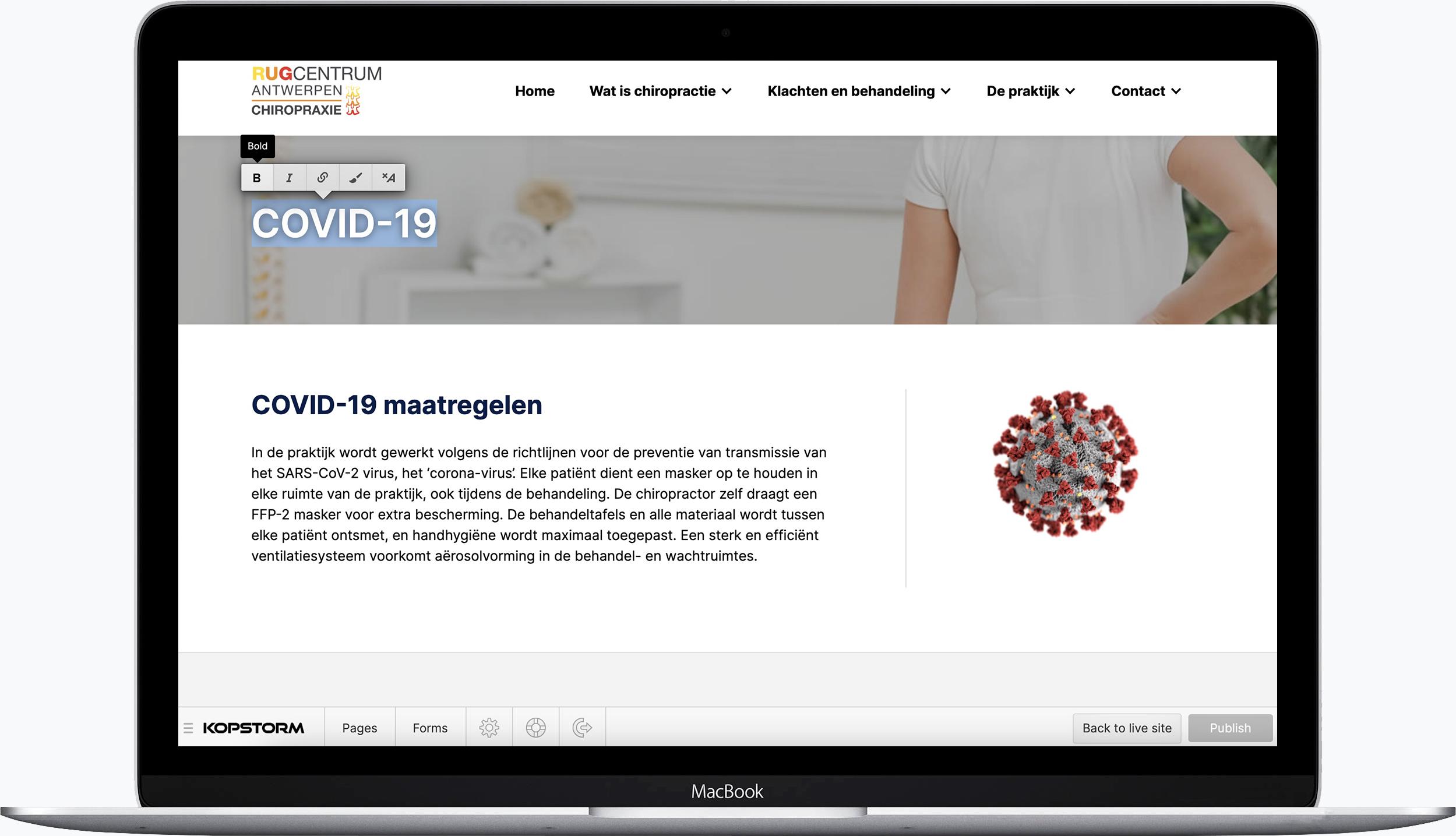 Webflow website editor
