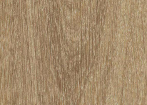 Vinylboden Natural Giant Oak – Natürliches Rieseneichenholz – Muster bestellen!