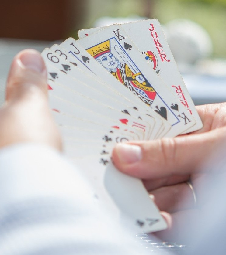 player looking at his hand of cards