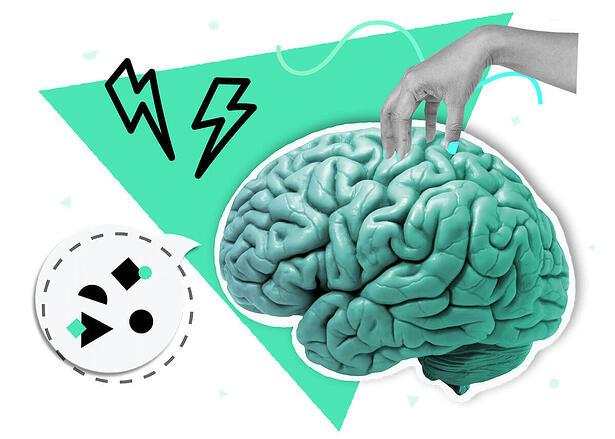 Brain Documenting Templates Knowledge