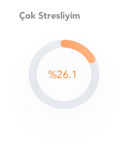 stres-orani-cok-stresli-grafik