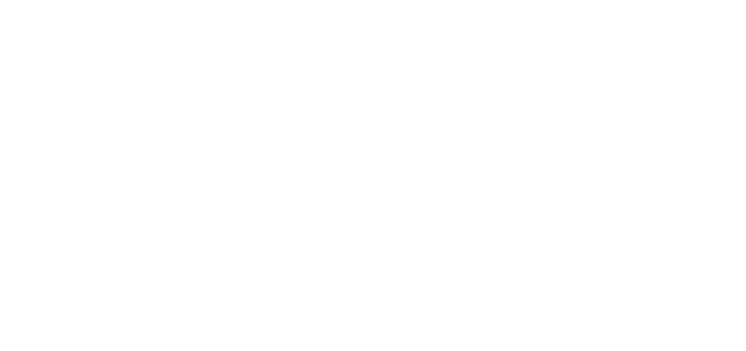 ecommerce evolution logo