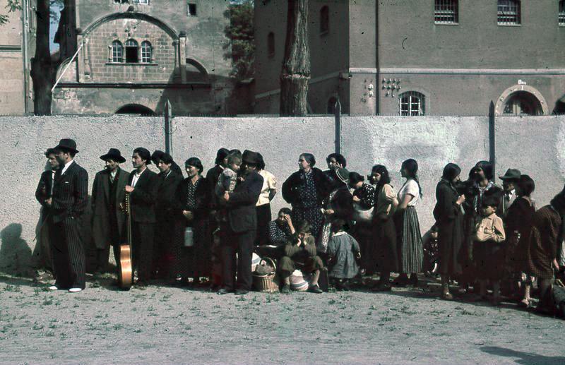 Les nazis considéraient les Tsiganes (Sinti et Roms) comme un « problème » socio-racial devant être éradiqué de la nation allemande.
