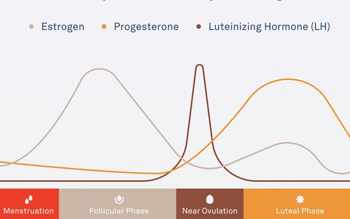 oura ring hormonal data