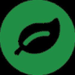 Rainforest Leaf Logo