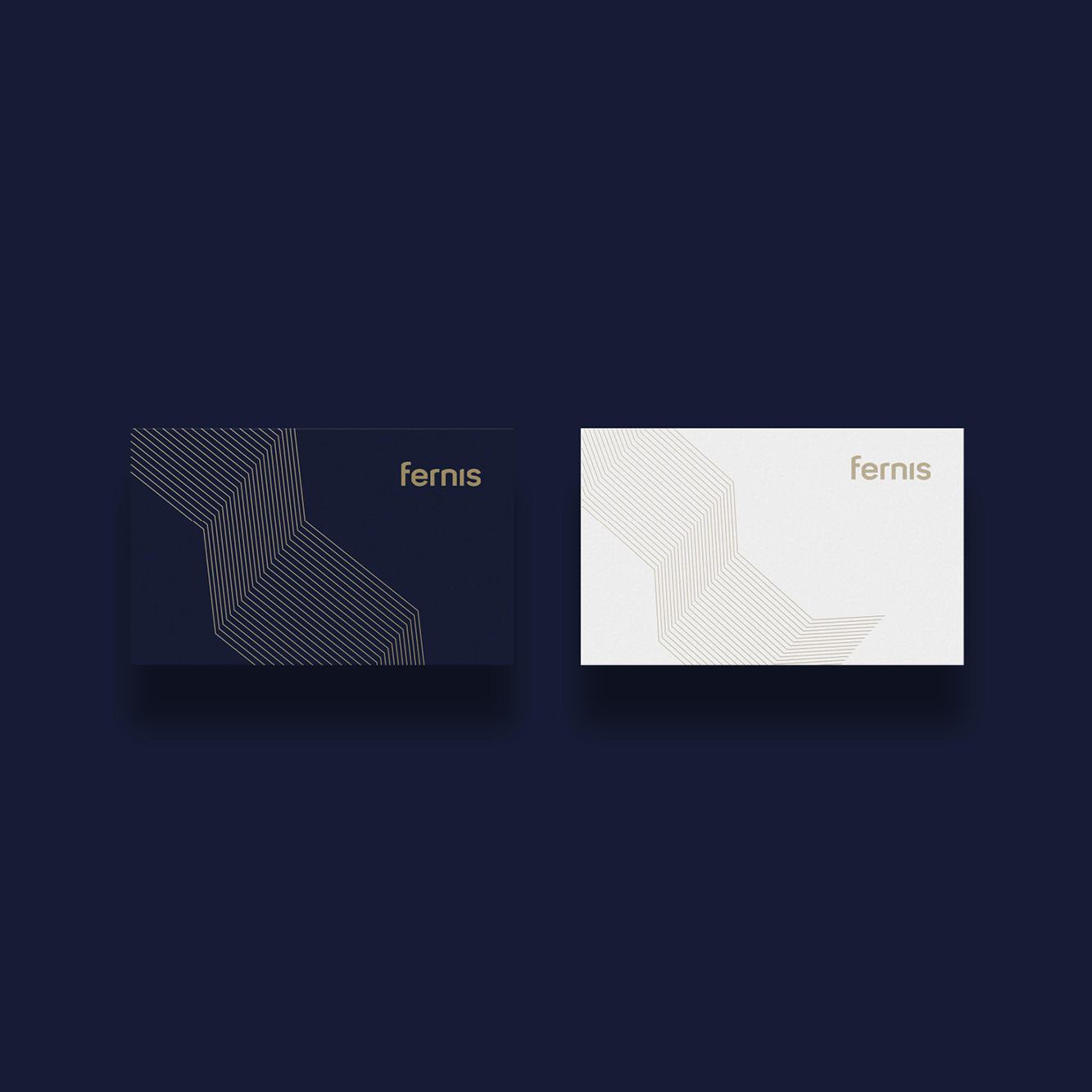Showing the intro animation and how a business card looks