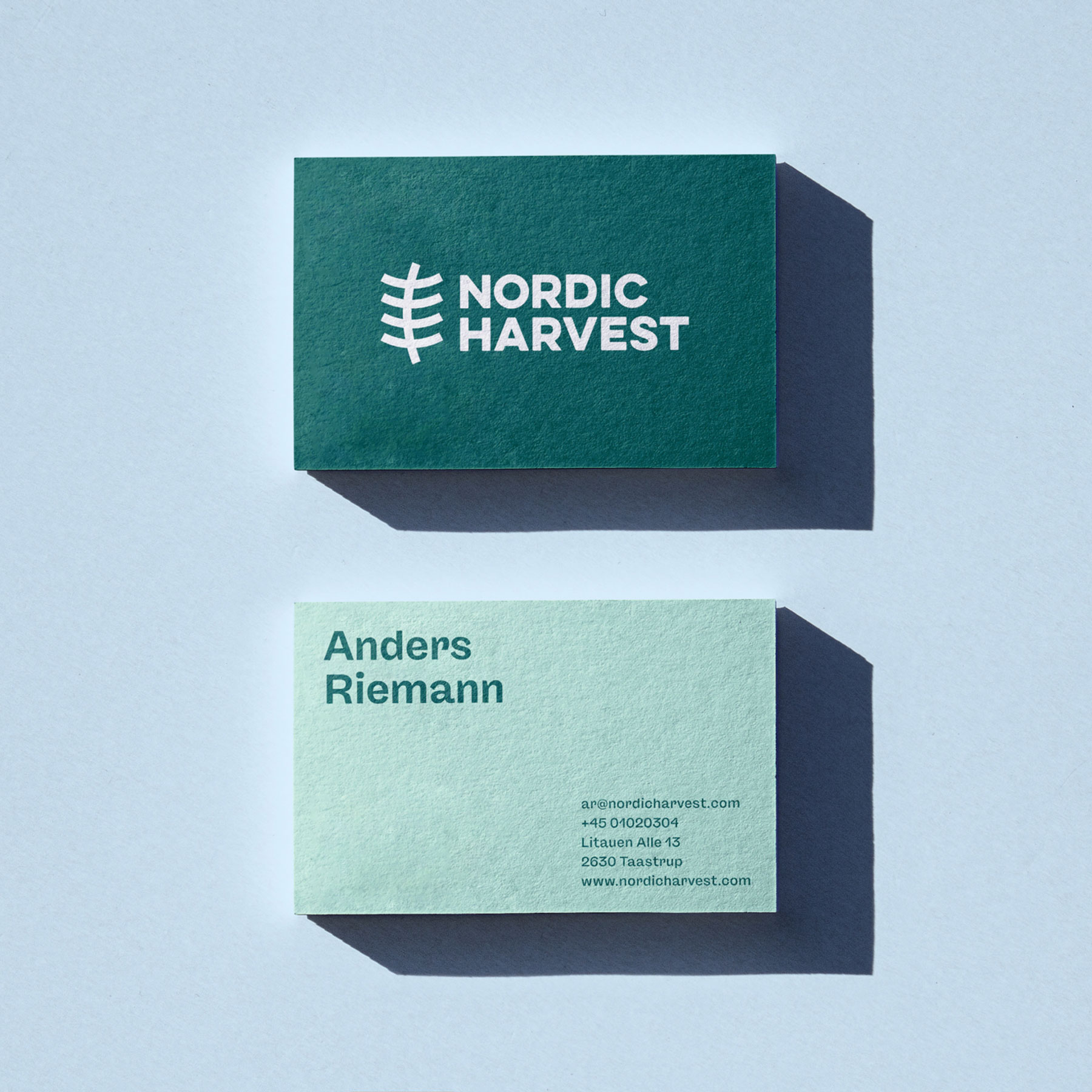 the new design of nordic harvest