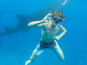 Schwimmen mit den Giganten