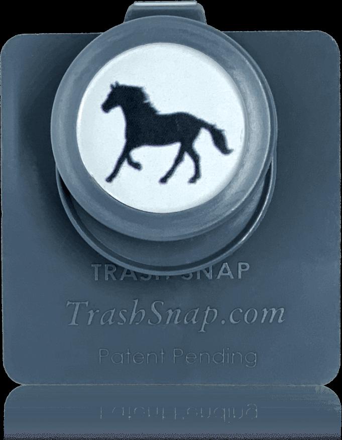 Snappy Stallion