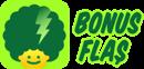 Bonus Flaş