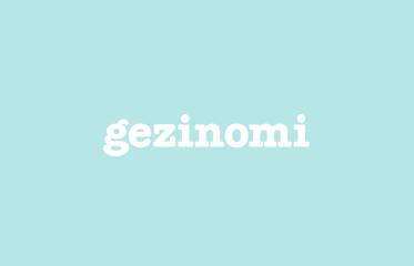Gezinomi Web Sitesi Kullanılabilirlik Testleri