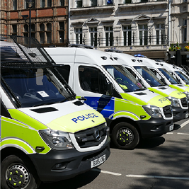 A row of police vans