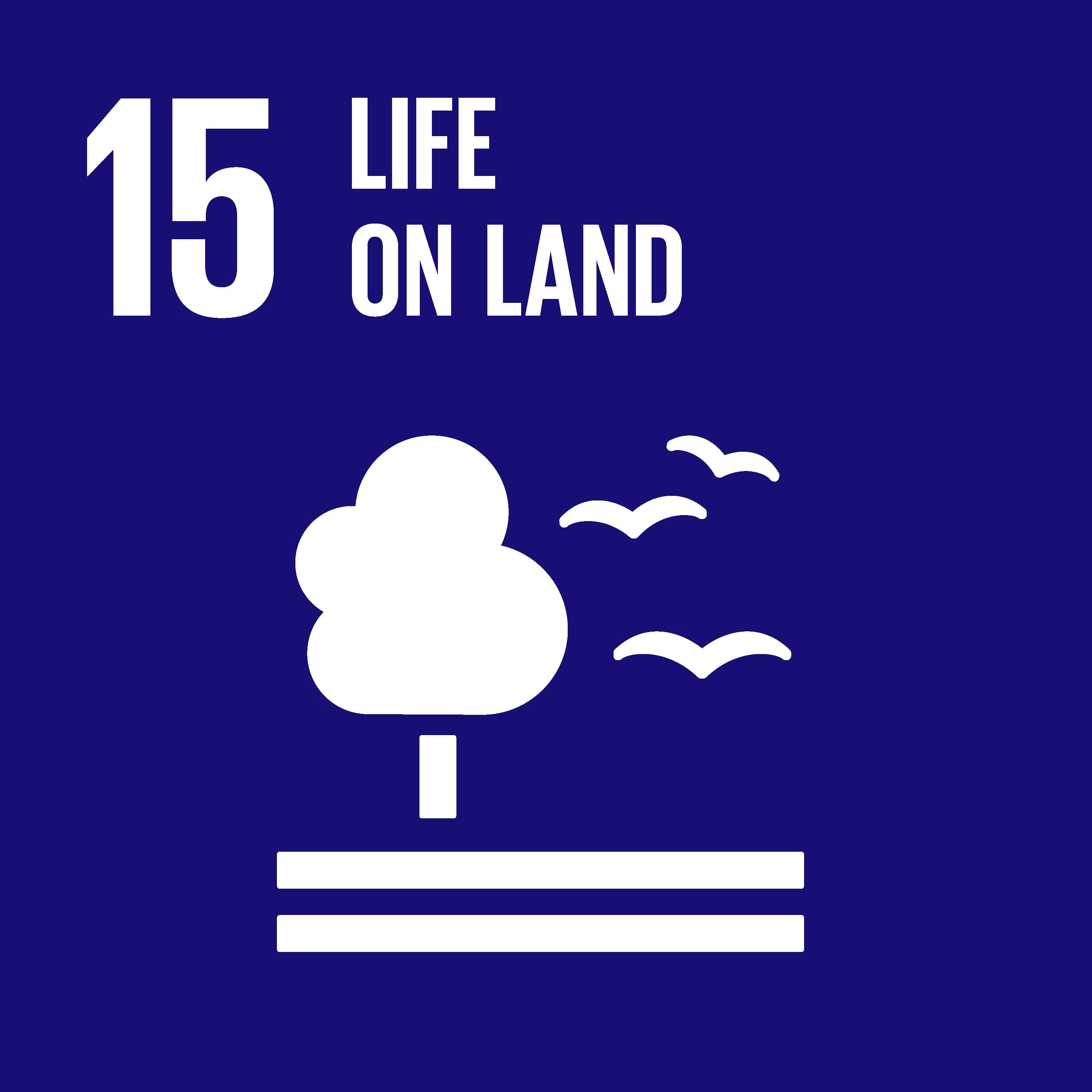 United Nations Goal 15: Life On Land