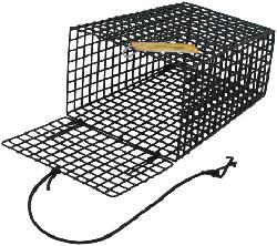 """SMI BAIT CAGE TAPERED 6x4x8 1/2""""GRID,GRN"""