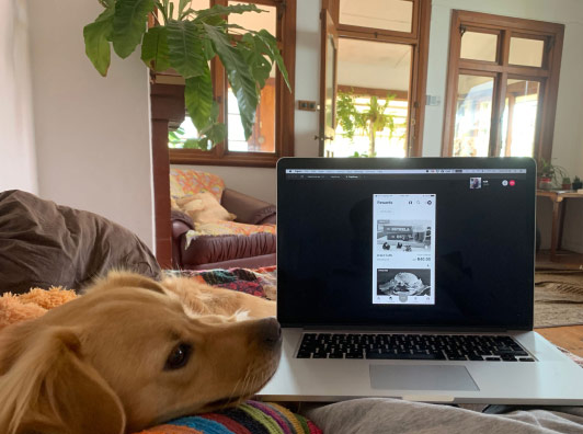 Team member Pieter working at home on remote Wednesday.
