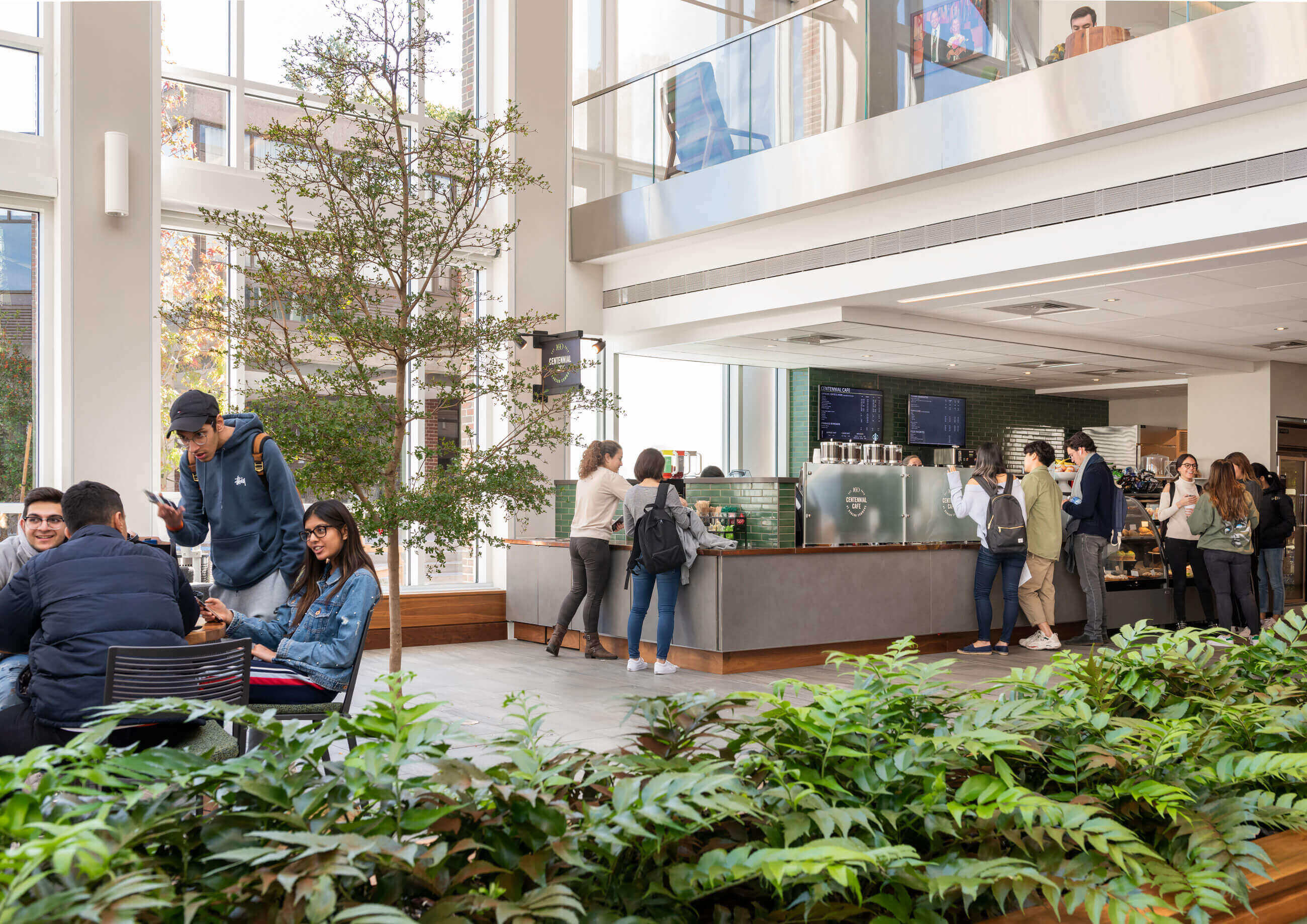 Students waiting in line at a cafe bar under the balcony, with indoor plantings in the foreground and a tree near the cafe counter.