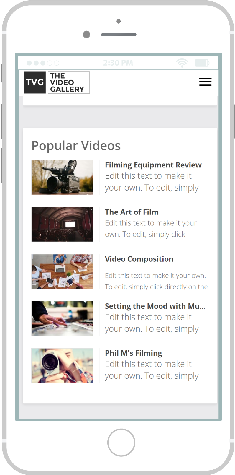 All-In-One Online Video Sales Website - The Video Gallery Mobile View 2 Example