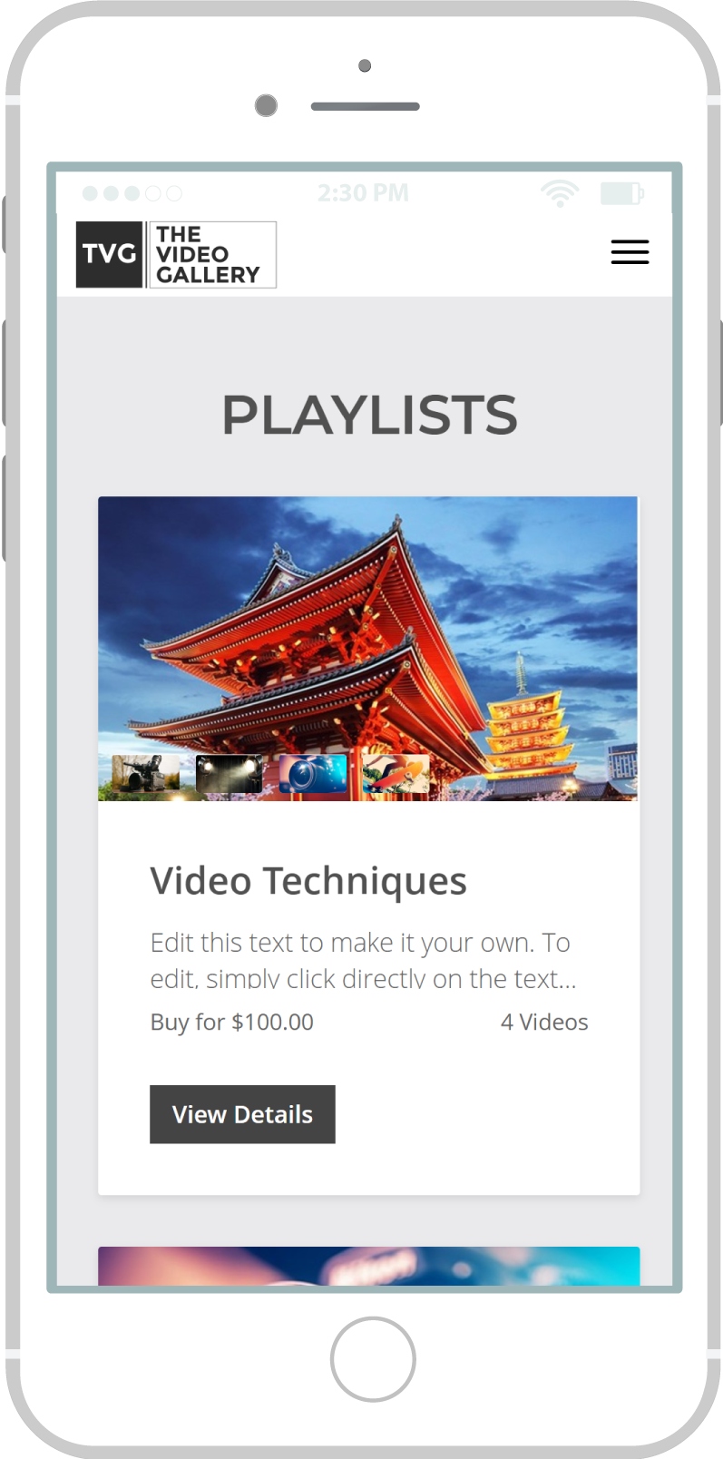 All-In-One Online Video Sales Website - The Video Gallery Mobile View 3 Example
