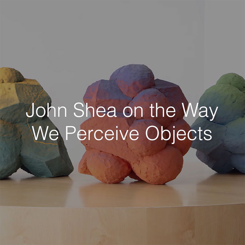 John Shea on the Way We Perceive Objects