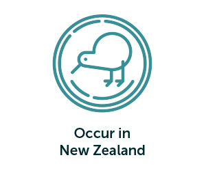 Occur in New Zealand