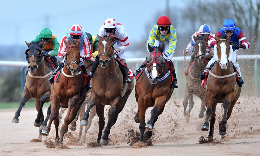 horse racing betting systems pdf merge