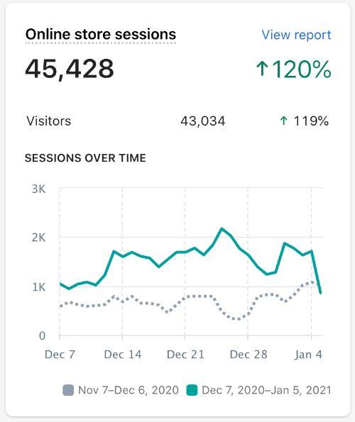 Screenshot of Shopify store analytics