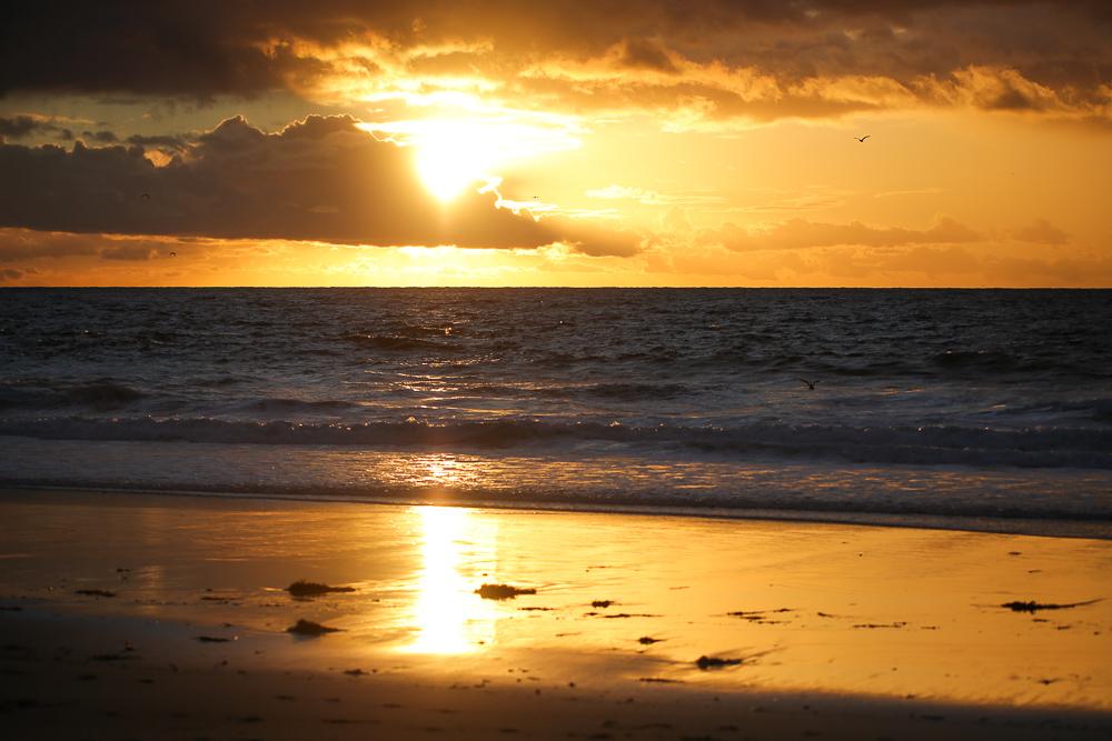 Beach sunset golden hour orange glow