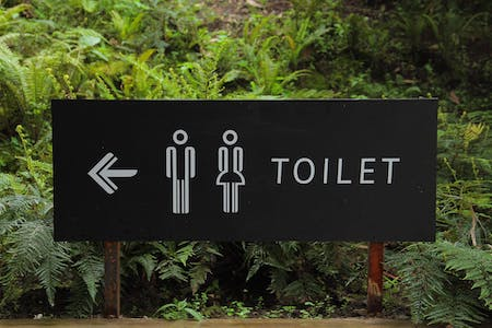 wooden toilet sign in front of a forest
