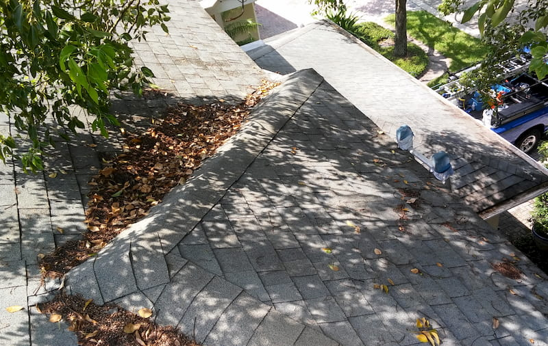 Gutter Cleaning in Tampa Fl