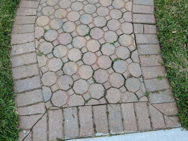 Paver Curing